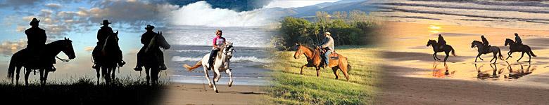 Vacaciones a caballo en  Alemania - rutas y excursiones